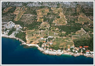 Vinorodno područje Pelješca